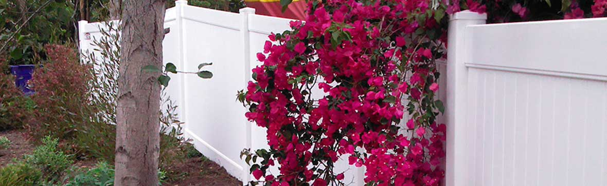 Flowers Growing Against Vinyl Fence